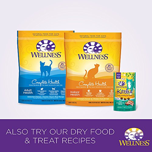 Wellness Healthy Indulgence Chicken, Duck & Shrimp Natural Wet Cat Food, 3-Ounce Pouch (Pack of 24)
