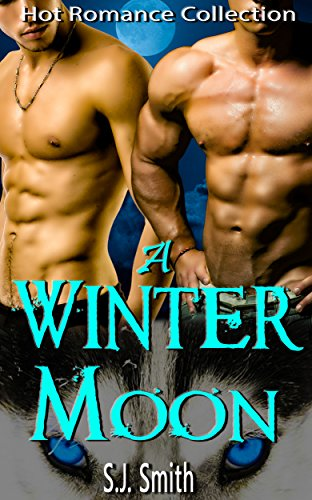 A Winter Moon: Hot Romance Collection (English Edition)