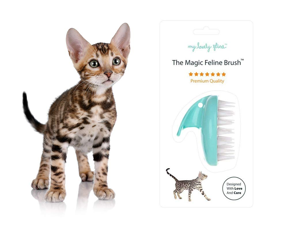 My Lovely Feline: The Original Magic Feline Brush [Premium Anti-Bacterial Grade Silicone Brush for Long Haired & Short Haired Cats] Seafoam Blue