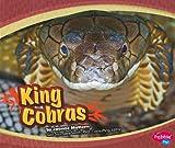 King Cobras (Asian Animals)