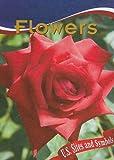 Flowers, Leia Tait, 1590368940