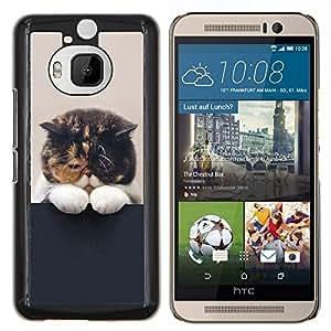 EJOOY---Cubierta de la caja de protección para la piel dura ** HTC One M9Plus M9+ M9 Plus ** --Gatito soñoliento lindo gato del animal doméstico felino Paw