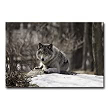Modern Canvas Painting Wall Art The Picture For Home Decoration Wolf In A Wintery Landscape In Black And White Animal Wolf Print On Canvas Giclee Artwork For Wall Decor