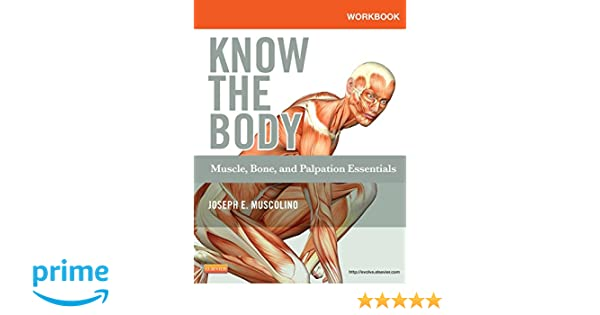 Workbook for know the body muscle bone and palpation essentials workbook for know the body muscle bone and palpation essentials 9780323086837 medicine health science books amazon fandeluxe Choice Image