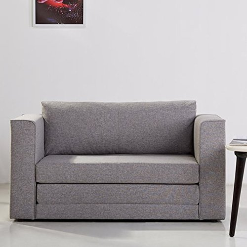 Sleeper Sofa Twin, Convertible Upholstered Loveseat with Arms, Contemporary Stylish Living Room Seat (Ash) - Loveseat Living Ash Room