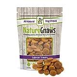 Nature Gnaws Smoked Salmon & Sweet Potato Chips - 100% Natural Grain Free Dog Treats