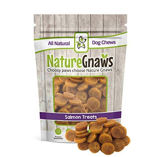 (Nature Gnaws Smoked Salmon & Sweet Potato Chips - 100% Natural Grain Free Dog Treats (12 oz))
