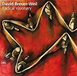 David Breuer-Weil Radical Visionary, Susie Stanton Staikos and Richard Aronowicz, 885720863X