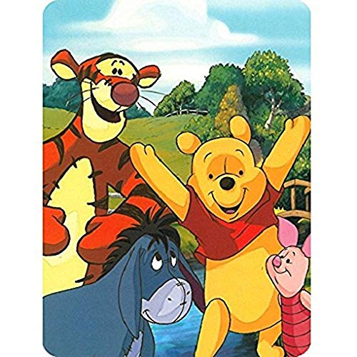 Disney Winnie the Pooh Hunny Dayz Tigger, Eeyore, Pigglet 60x80 Twin Mink Style ()