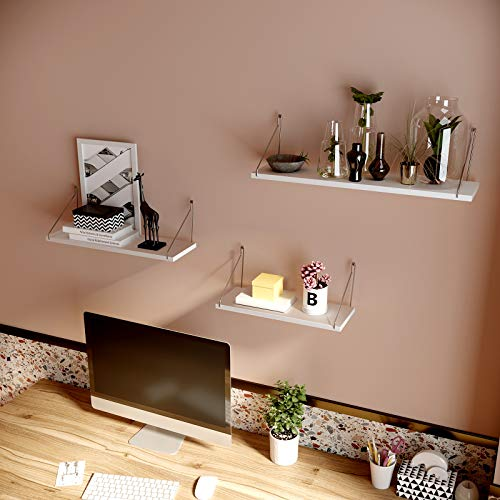 Decorative Wall Shelves Set