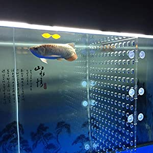 toyuto Aquarium Fish Tank Acrylic Divider 10/29/30/40/55/75/120 Gallon Isolation Board (Suction Cup No Included) 6