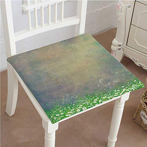 - Mikihome Outdoor Chair Cushion Antique Old Planks American Style Western Rustic Wooden,Small Grass and Daisies Comfortable, Indoor, Dining Living Room, Kitchen, Office, Den, Washable 18