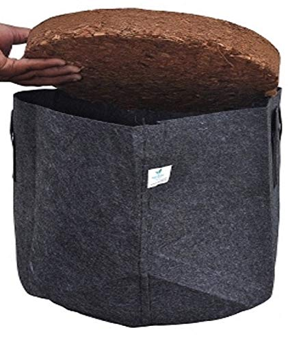 HortGrow GreenEra Grow Bag with Coco Coir Potting Mix 7 Gallons