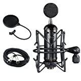 Blue Blackout Spark SL XLR Condenser Microphone with Pop Filter & 20' XLR Cable