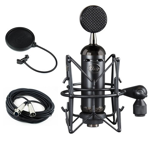 Blue Blackout Spark SL XLR Condenser Microphone with Pop Filter & 20' XLR Cable by Blue