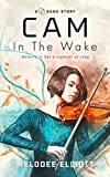 Cam: In the Wake