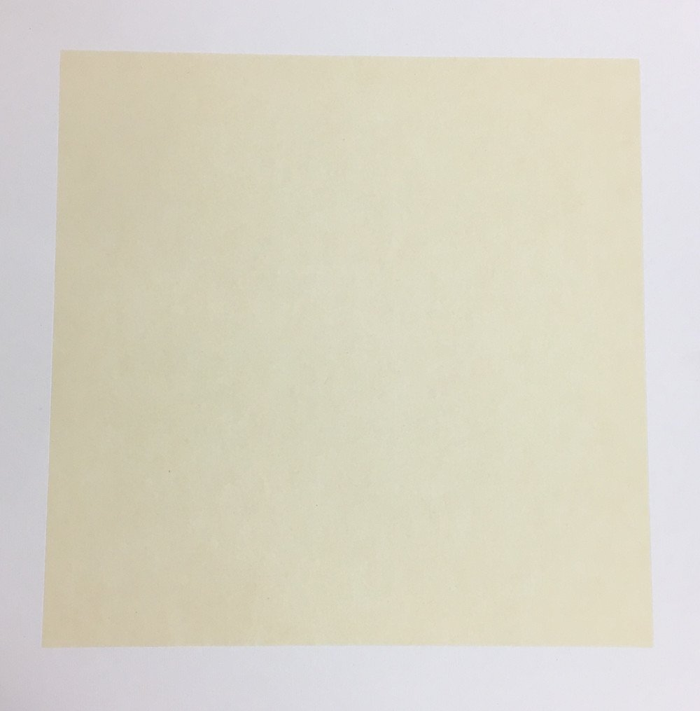 KZ185 Hmay Pre-Mounted Soft Shikishi with Jingxian Raw Xuan Paper/Chinese Shikishi for Sumie Painting and Brush Calligraphy 10 Sheets (Square 33 cm, 12.99) (12) 12.99) (12)