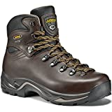 Asolo Men's TPS 520 GV EVO Chestnut Boot 9 E