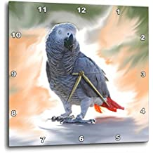 3dRose dpp_4030_3 African Grey Parrot Wall Clock, 15 by 15-Inch