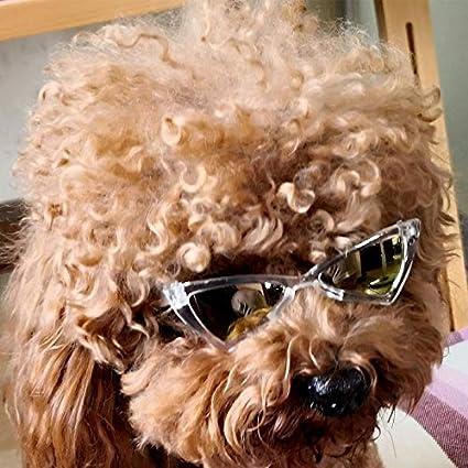 JINQD Gafas de Sol para Perros, Mat The Matrix of Kitty/Cat ...