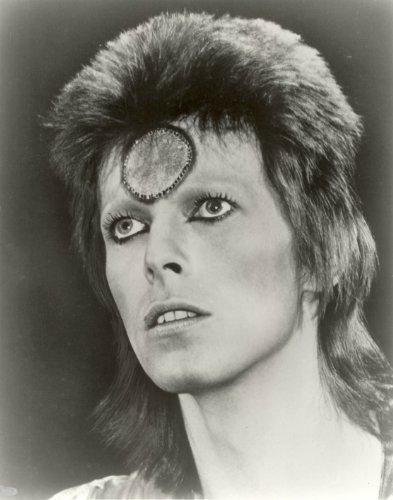 (David Bowie Photo Ziggy Stardust Rock Star Music Photos 8x10 )