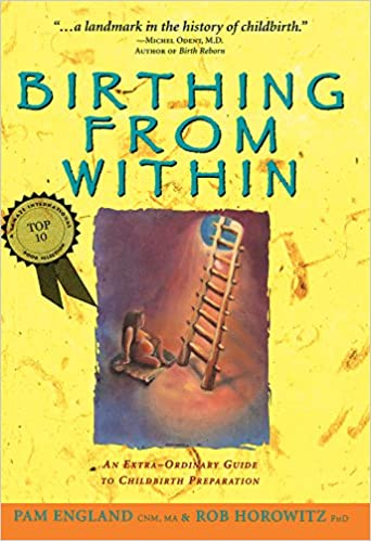 Birthing from within an extra ordinary guide to childbirth birthing from within an extra ordinary guide to childbirth preparation 1st edition kindle edition fandeluxe