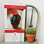 Knit-your-own-Cactus-Kit-DIY-with-pattern-and-knitting-needles-yarn-pot-stuffing-etc-Great-beginner-knitter-crafter-gift-Choose-your-flower-color