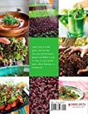 Microgreens: A Guide To Growing Nutrient-Packed
