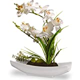 """National Tree 13"""" White Orchid Flowers"""