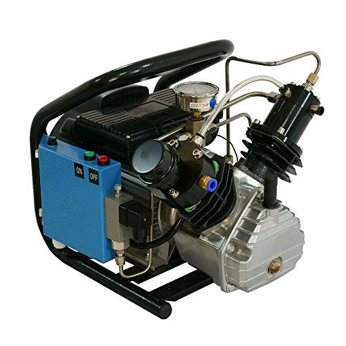 D Machinery 4500psi High Pressure Air Compressor,Auto Stop,110v 60Hz