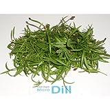Micro Greens - Dill - 4 x 8 oz