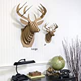 Cardboard Safari | Cardboard Deer Taxidermy Art 3D Model Puzzle | SFI Certified Recycled Cardboard| Made in the USA | Bucky (Large, Brown)