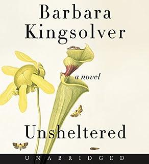 Book Cover: Unsheltered CD: A Novel