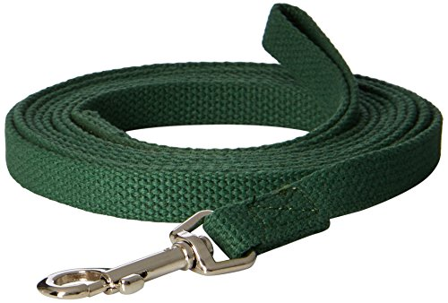 OmniPet Cotton Dog Training Lead for Dogs, 10', Green