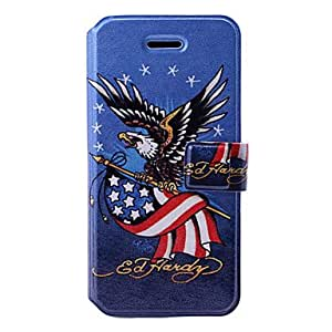 Eagle/USA Flag Art Pattern Leather Case with Holder & Card Slots for iPhone 5/5S