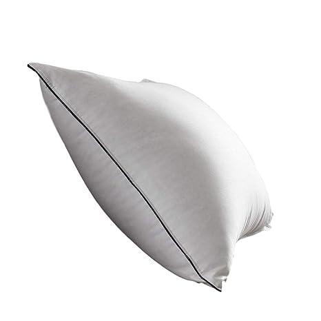 Amazon.com: Toque de dobles estándar – Almohada de plumón ...