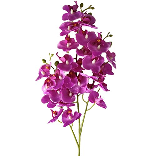 "YSZL 5pcs 30"" Tall Artificial Silk Phalaenopsis Orchid Flower Stem Arrangements (Dark Blue-Purple)"