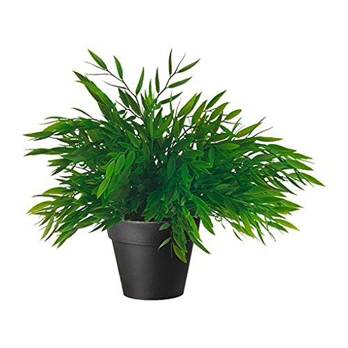 Ikea Artificial Potted Plant, House Bamboo, 11 Inch, Pack of 2 by Ikea