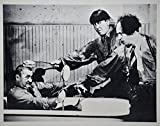 1940's - The 3 Stooges - Vintage 8x10 B&W Photograph - Three Little Beers