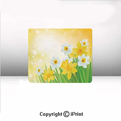8b8b20c18 Non-Slip Small Mouse pad,Daffodils Garden Narcissus Rebirth and New  Beginnings Celebration Graphic