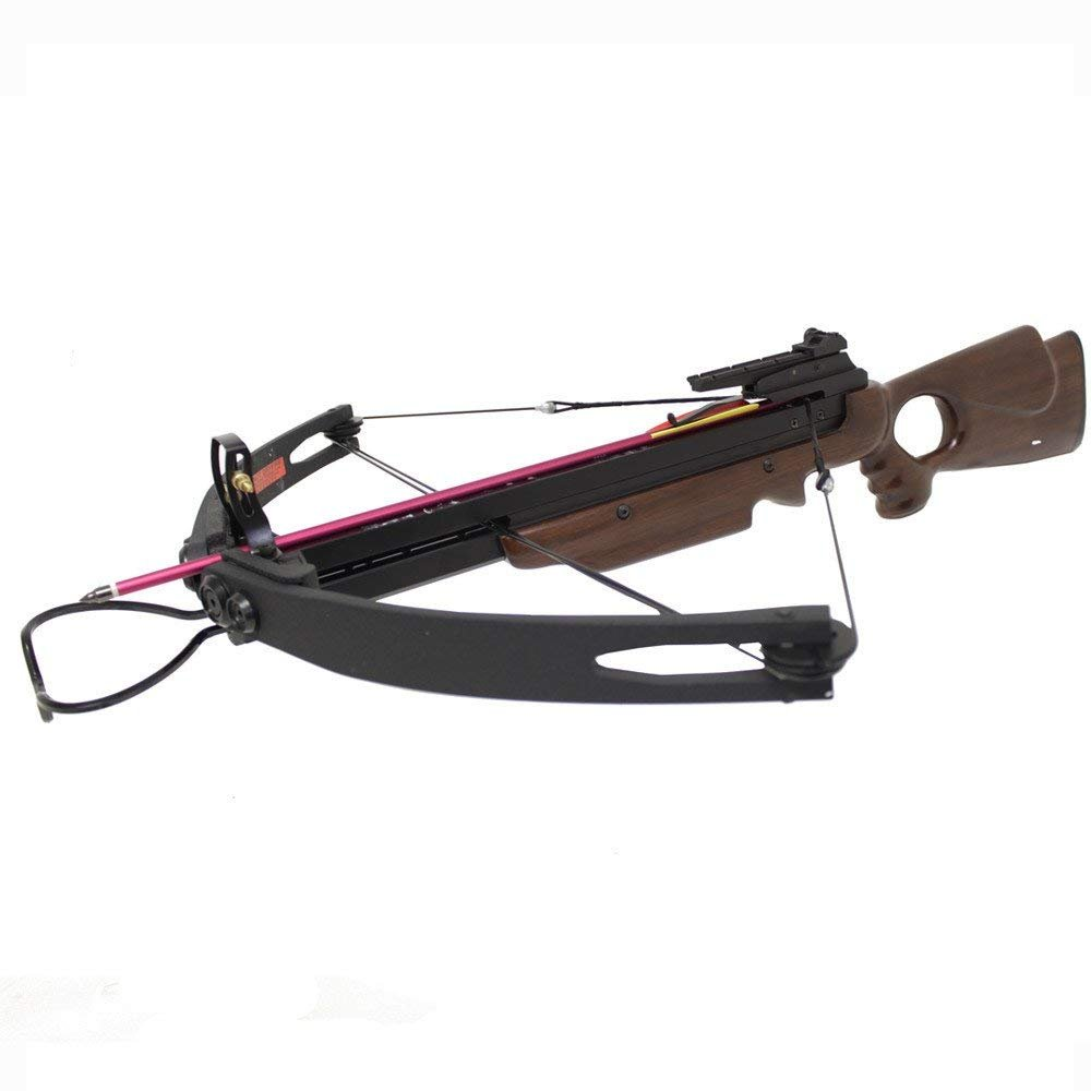 Spider 150 lbs Compound Hunting Crossbow