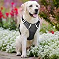 SHINE HAI No Pull Dog Harness Reflective Adjustable Dog Safety Vest Harness with Handle for Pets Dogs Walking Training Outdoor Easy Control