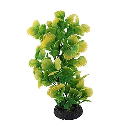 Amazon.com : eDealMax plástico Submarino ornamento planta herbácea peces de acuario tanque decoración Verde : Pet Supplies