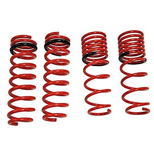 Tanabe TNF024 NF210 Lowering Spring with Lowering Height 1.5/1.0 for 1998-2005 Lexus GS300 (Tanabe Sustec Nf210 Lowering Springs)