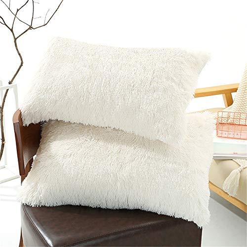 Tenghe Solid Plush Standard/Queen Pillowcase 2 Pack Super Soft Fluffy Faux Fur Shaggy Pillow Cases/Covers Decorative Throw Pillow Shams with Zipper Closure.No Inside Filler (Cream White,20