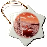 3dRose Danita Delimont - Forests - USA, California, Mammoth Lakes. Infrared overview of Twin Lakes. - 3 inch Snowflake Porcelain Ornament (orn_278524_1)