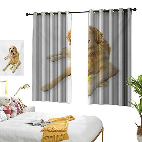 S Brave Sky Golden Retriever Drapes for Living Room Pet Dog Laying Down with Toy Friendly Domestic Puppy Playful Companion W55 x L45,Suitable for Bedroom Living Room Study, etc.