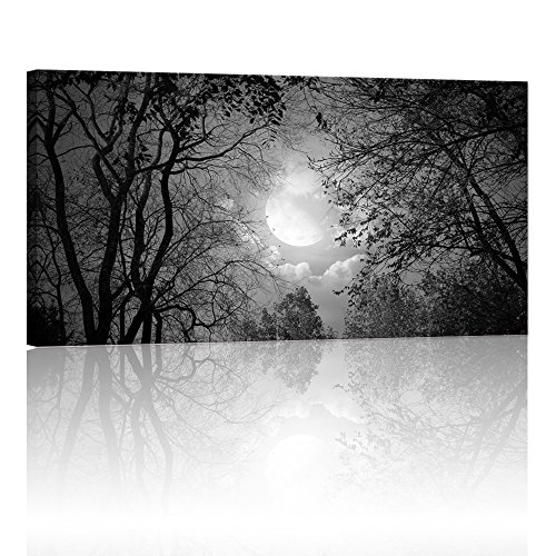 Visual Art Decor,Modern Wall Art,Full Moon Forest Giclee Canvas Prints,Landscape Painting Prints, Peace Autumn Forest Night Scenery Wall Artwork Ready to Hang (Framed, Black and White)