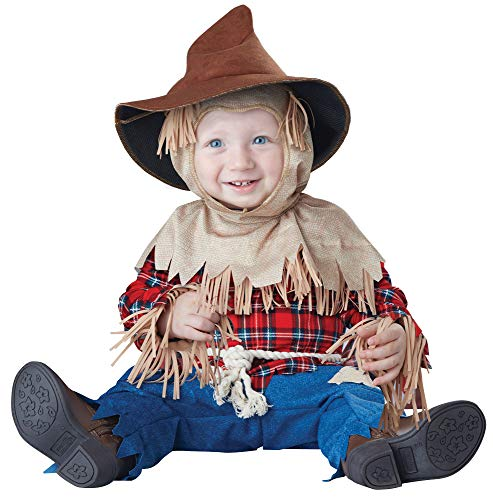 California-Costumes Silly Scarecrow Funny Theme Infant Toddler Halloween Costume, 18-24M