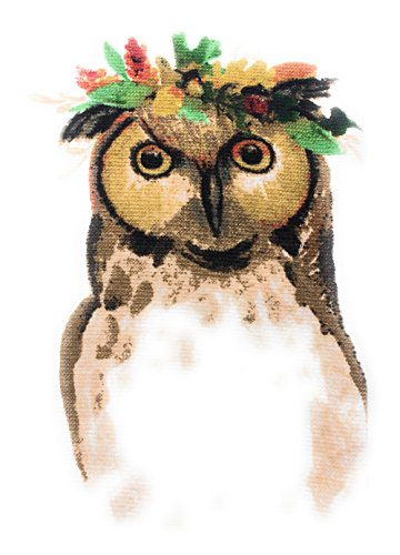 Gilded Maple Autumn Fall Harvest Owl Kitchen Towels Set of 2